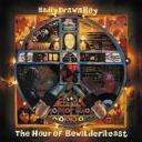 Badly Drawn Boy - The hour ofBewilderbeast